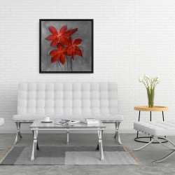 Framed 24 x 24 - Asiatic lily