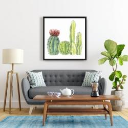 Framed 24 x 24 - Four little cactus