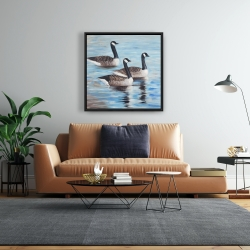 Framed 24 x 24 - Canada geese in water