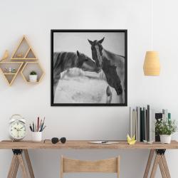 Framed 24 x 24 - Horses lover