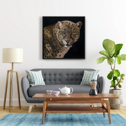Framed 24 x 24 - Realistic fierce leopard