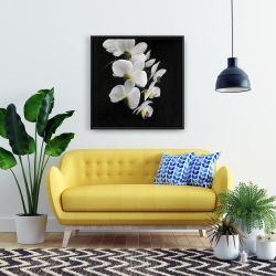 Framed 24 x 24 - Beautiful orchids