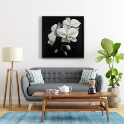 Framed 24 x 24 - White orchids