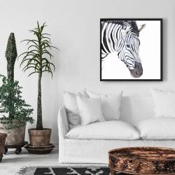Framed 24 x 24 - Zebra
