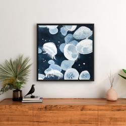Framed 24 x 24 - Jellyfishs