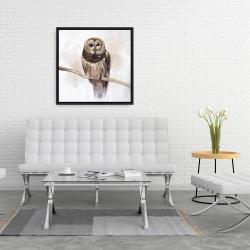 Framed 24 x 24 - Barred owl