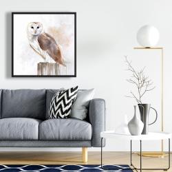 Framed 24 x 24 - Barn owl
