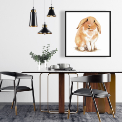 Framed 24 x 24 - Lop-rabbit