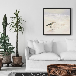 Framed 24 x 24 - Semipalmated sandpiper on the beach