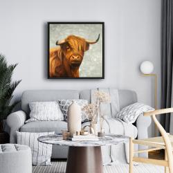 Framed 24 x 24 - Highland cattle