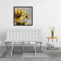 Framed 24 x 24 - Mountain arnica flowers