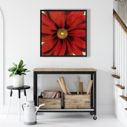 Framed 24 x 24 - Red daisy
