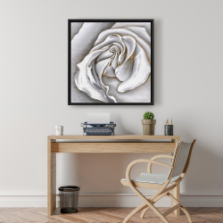 Framed 24 x 24 - White rose delicate