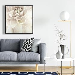 Framed 24 x 24 - Delicate chrysanthemum
