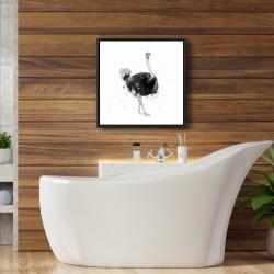 Framed 24 x 24 - Proud ostrich
