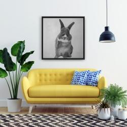 Framed 24 x 24 - Funny gray bunny