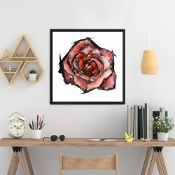 Framed 24 x 24 - Watercolor rose