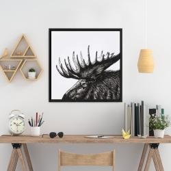 Framed 24 x 24 - Moose plume