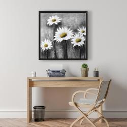 Framed 24 x 24 - Daisies