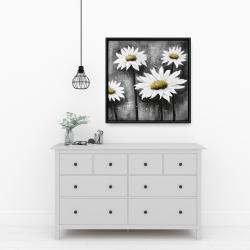 Framed 24 x 24 - Daisies at sun