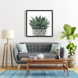 Framed 24 x 24 - Zebra plant succulent
