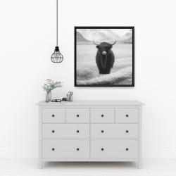 Framed 24 x 24 - Monochrome highland cow