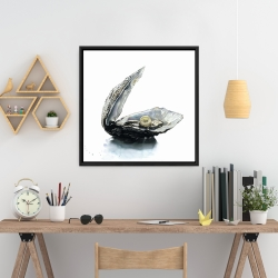 Framed 24 x 24 - Pearl oyster