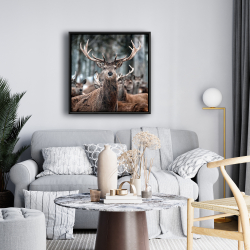 Framed 24 x 24 - Stags