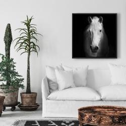 Framed 24 x 24 - Monochrome horse