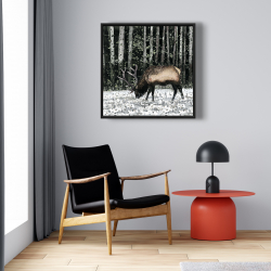 Framed 24 x 24 - Caribou in the forest