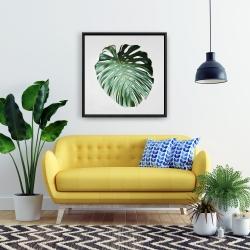 Framed 24 x 24 - Monstera leaf