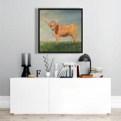 Framed 24 x 24 - Daisy the highland cow