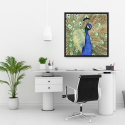 Framed 24 x 24 - Peacock