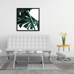 Framed 24 x 24 - Monstera deliciosa