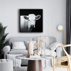 Framed 24 x 24 - White cow