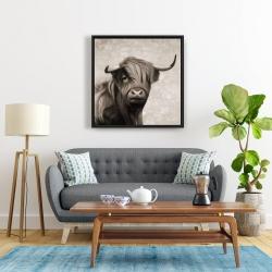 Framed 24 x 24 - Highland cattle sepia