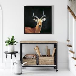 Framed 24 x 24 - Antelope