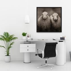 Framed 24 x 24 - Sheep sepia