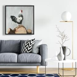 Framed 24 x 24 - Wyandotte rooster