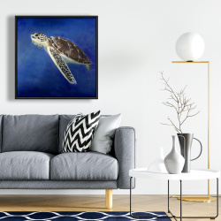 Framed 24 x 24 - Beautiful sea turtle