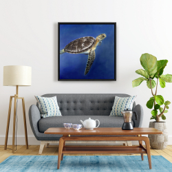 Framed 24 x 24 - Turtle in the ocean