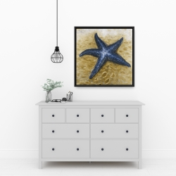 Framed 24 x 24 - Beautiful starfish