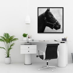 Framed 24 x 24 - Gallopin the horse