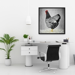 Framed 24 x 24 - Black and white wyandotte hen
