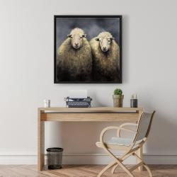 Framed 24 x 24 - Wool sheeps