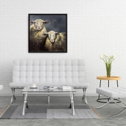 Framed 24 x 24 - Two sheeps