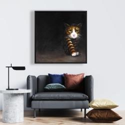 Framed 24 x 24 - Discreet cat