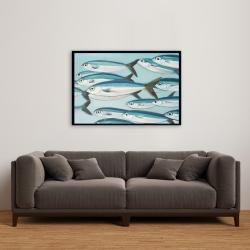 Framed 24 x 36 - Small fish of caesio caerulaurea