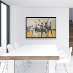 Framed 24 x 36 - Nguni breeding