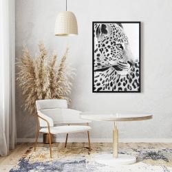 Framed 24 x 36 - Beautiful leopard